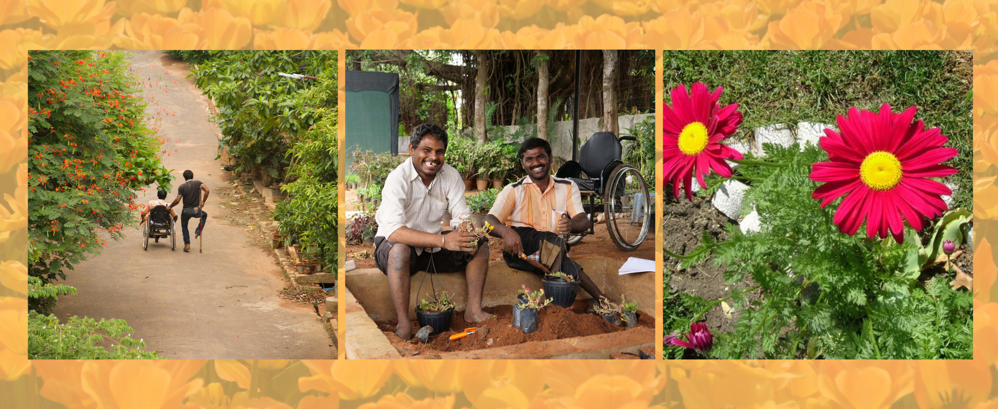 10-day Annual Garden Fair at APD Horticulture Training Center, Jeevan Bhima Nagar, Bangalore